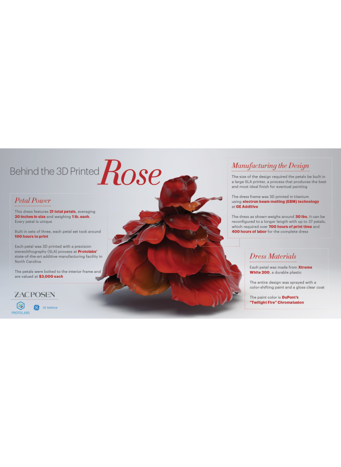 Manufacturing The Rose Infographic