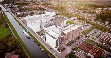 BENEO invests €50 million in increasing capacity at Wijgmaal rice starch plant. 